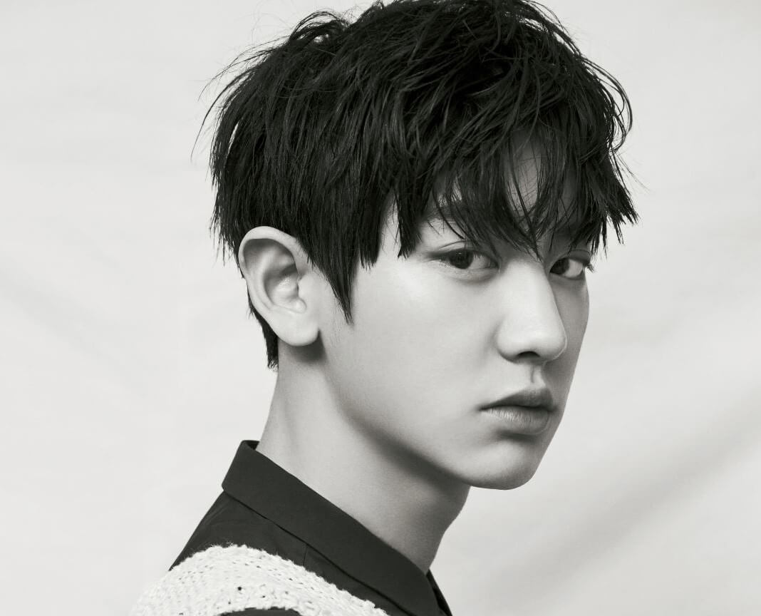 PARK CHANYEOL (박찬열)
